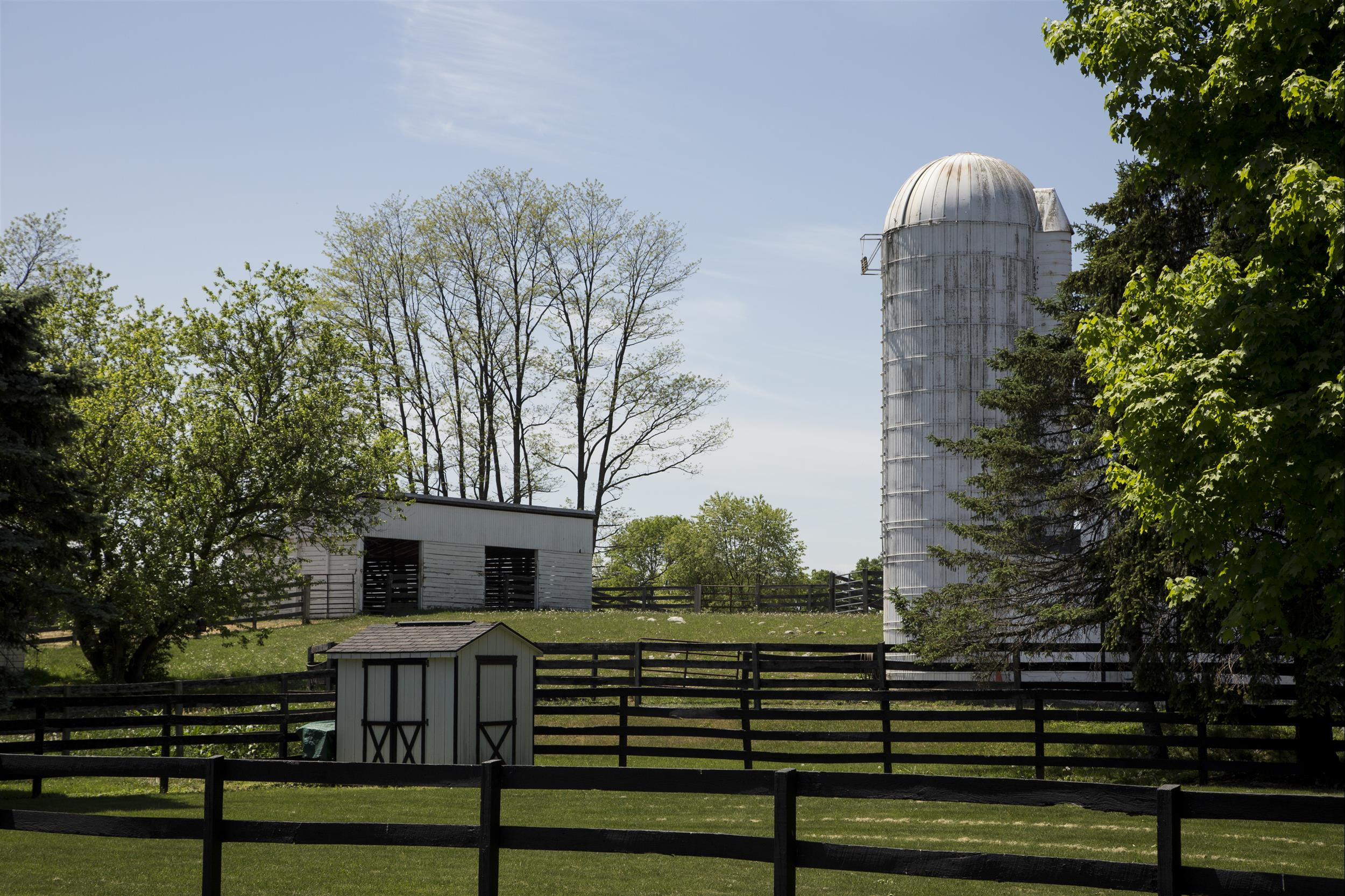 Silo-and-green-pastures.jpg