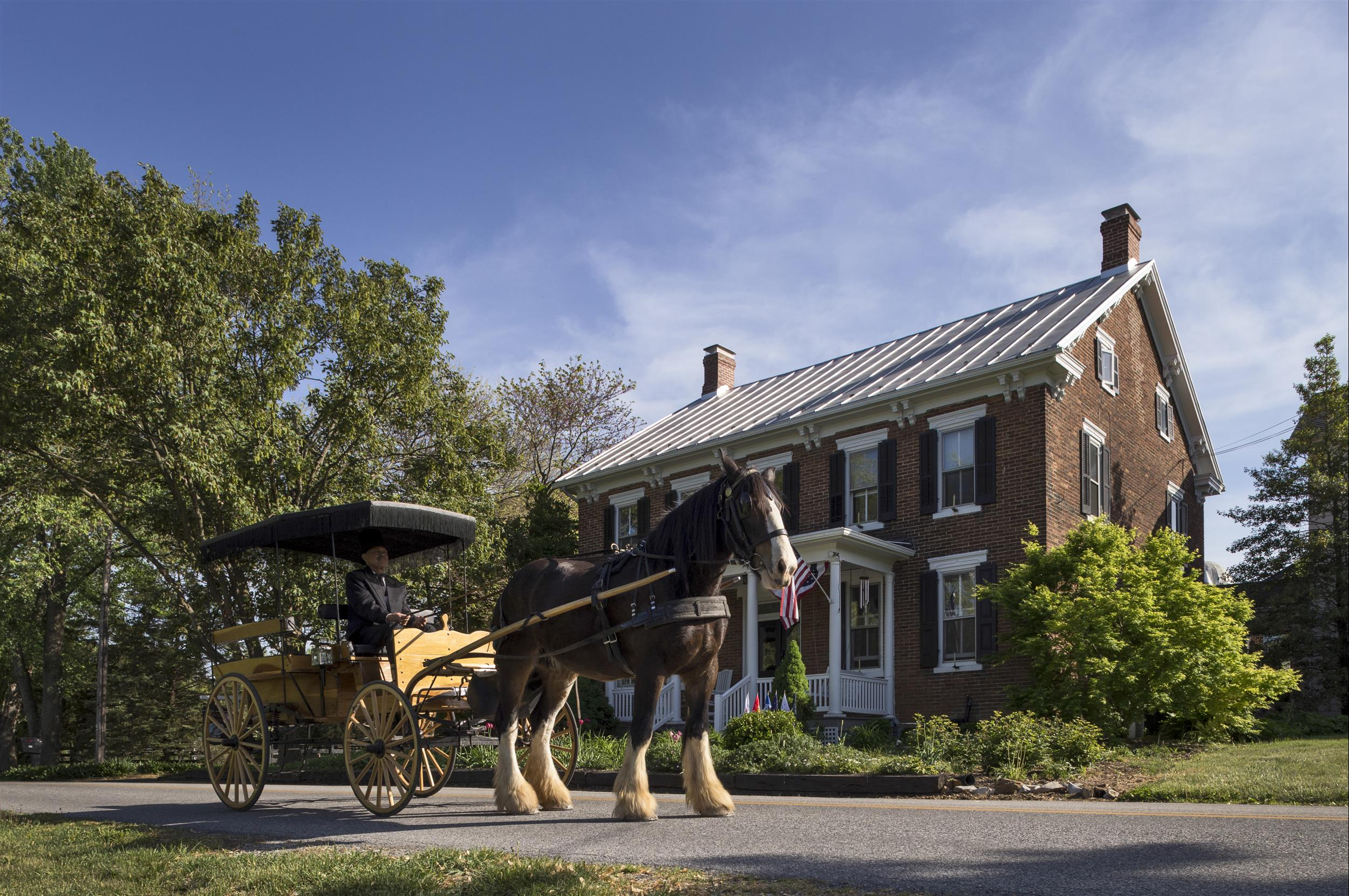 man-driving-horse-drawn-carriage-in-front-of-Inn.jpg